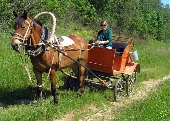russia-tver-oblast-horseback-riding-3