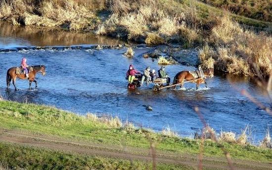 russia-tver-oblast-horseback-riding-4