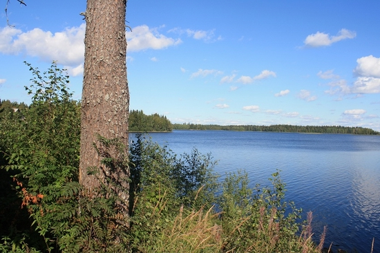 Vodlozersky national park, Russia view 8