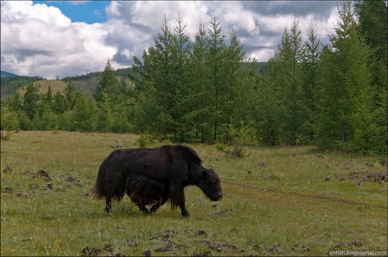 Sayany mountains, Buryatia, Russia trip view 15
