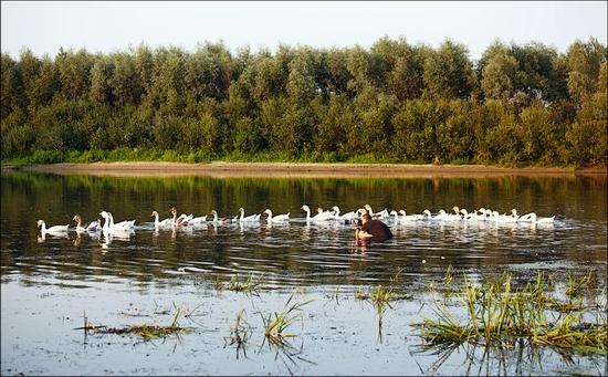 Bryansk oblast, Russia life scenery 15