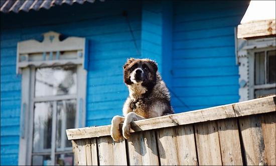 Bryansk oblast, Russia life scenery 4