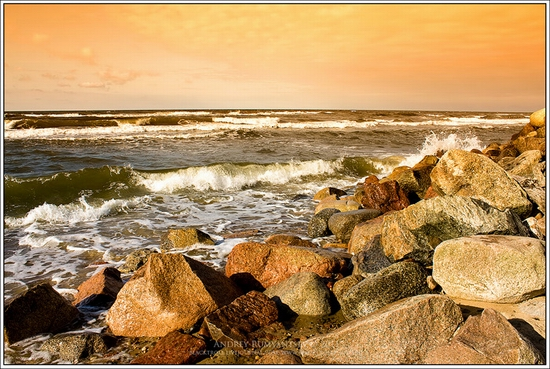 Baltic Sea coastline, Russia view 6
