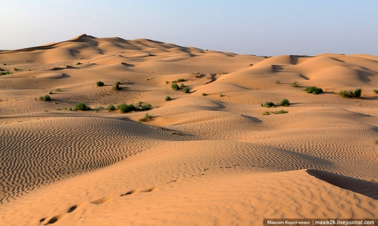 Big Brother - One of the highest sand dunes in Astrakhan oblast, Russia view 2