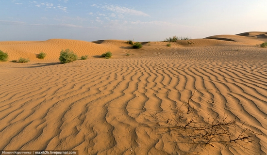 Big Brother - One of the highest sand dunes in Astrakhan oblast, Russia view 3