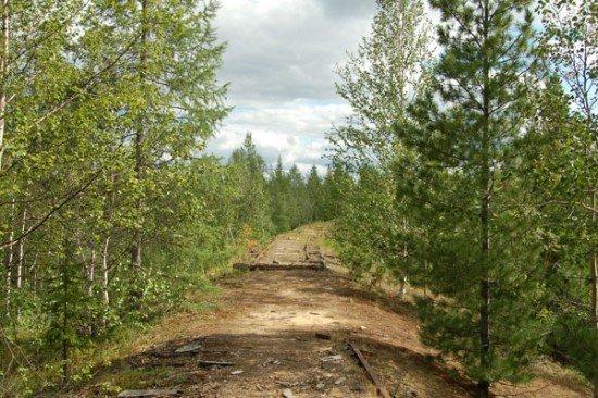 Abandoned Transpolar railway Salekhard-Igarka, Russia view 14