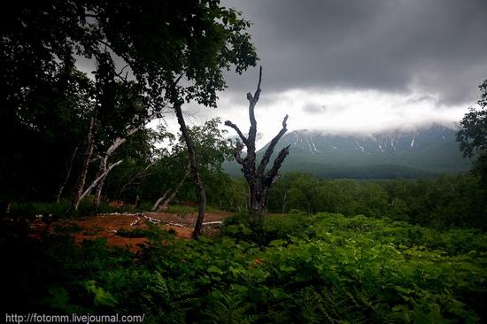 Natural park Nalychevo, Kamchatka peninsula, Russia view 14