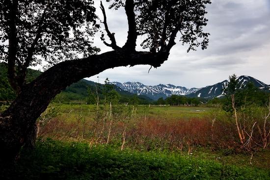 Natural park Nalychevo, Kamchatka peninsula, Russia view 5