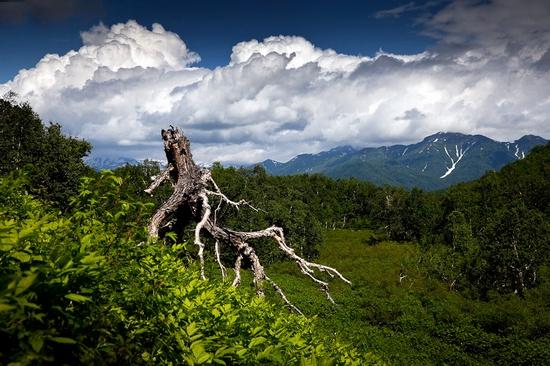 Natural park Nalychevo, Kamchatka peninsula, Russia view 6