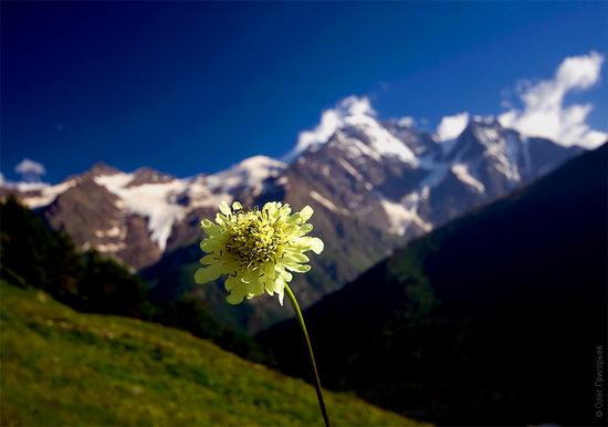 Mount Elbrus - highest peak in Russia view 21