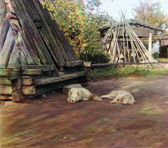 Prokudin-Gorsky, the Russian Empire photo 50