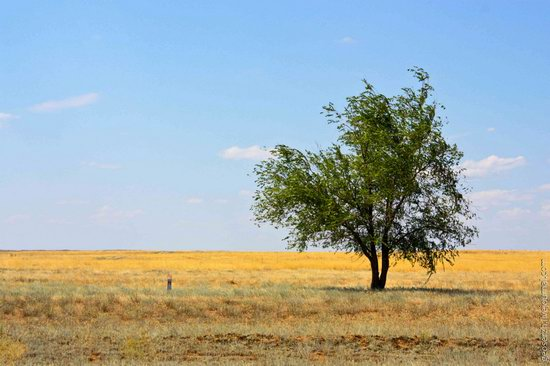 Astrakhan region, Russia nature view 1