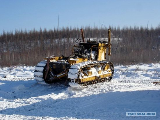 The life of a typical seismic prospecting crew in Russia photo 24