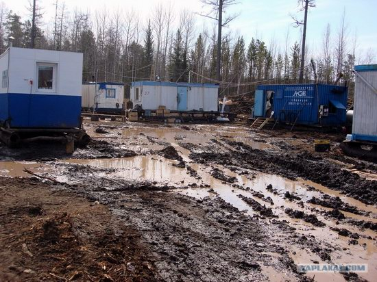 The life of a typical seismic prospecting crew in Russia photo 37