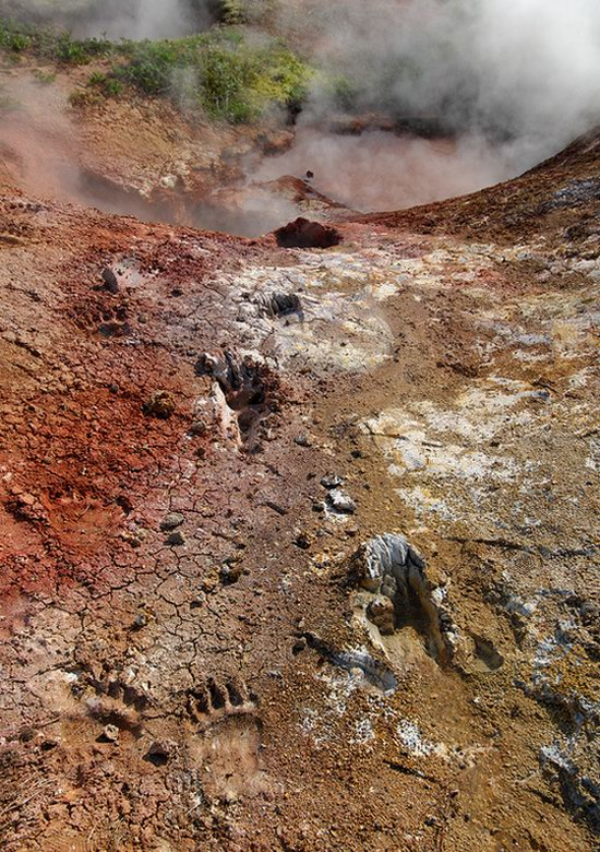 The Valley of Geysers colors, Kamchatka, Russia photo 10