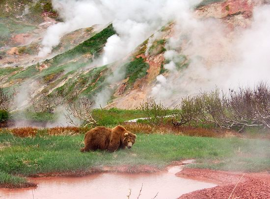 The Valley of Geysers colors, Kamchatka, Russia photo 12