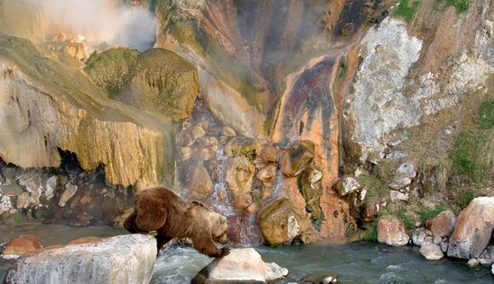 The Valley of Geysers colors, Kamchatka, Russia photo 13