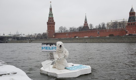 Polar bear floated past the Kremlin walls, Moscow, Russia photo 5