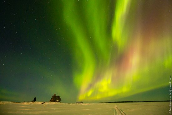Northern Lights (Aurora Borealis) in the sky over Karelia, Russia photo 16
