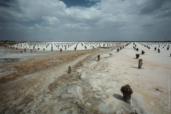 Salt Lake Baskunchak, Astrakhan Region, Russia photo 2