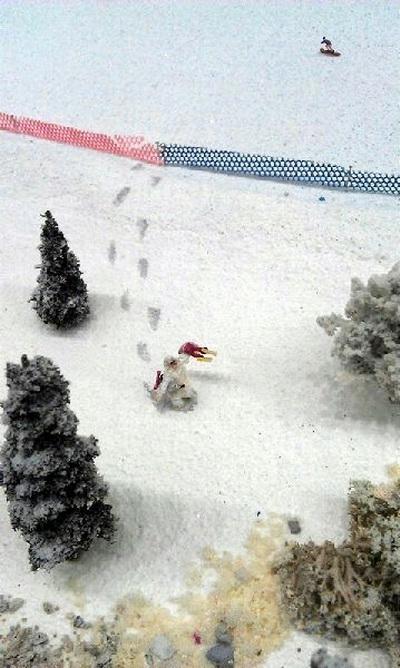 Lagonaki Ski Resort Layout, Russia photo 4