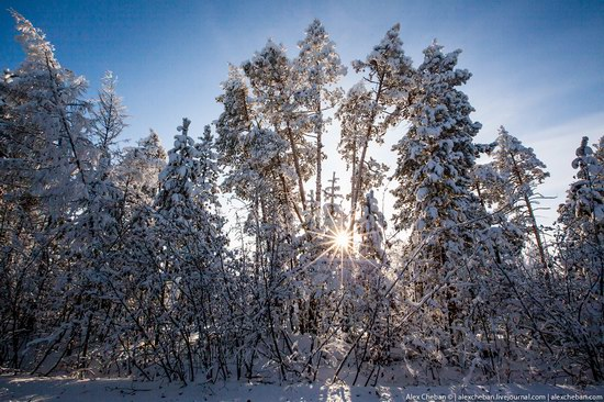 Living in frosty Yakutia, Russia, photo 11
