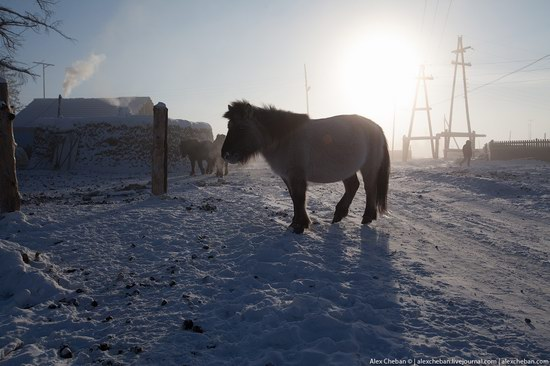 Living in frosty Yakutia, Russia, photo 12