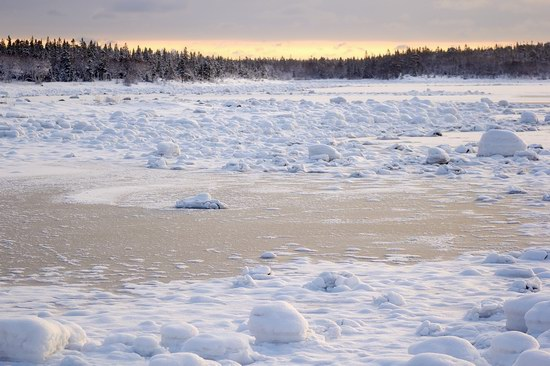 Cold Coast of the White Sea, Solovki, Russia, photo 13