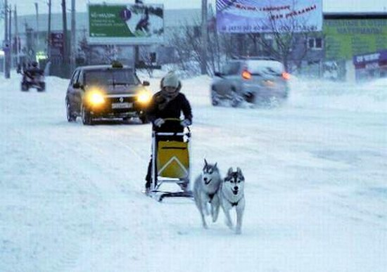 Snow apocalypse in Rostov region, Russia, photo 15