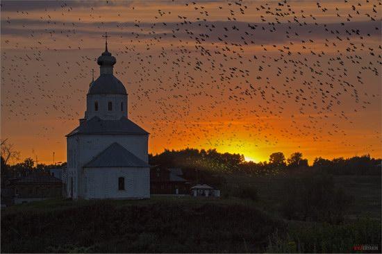Classic Russian landscape - sunset, church, birds
