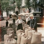 Color photos of Soviet people in the 1950s