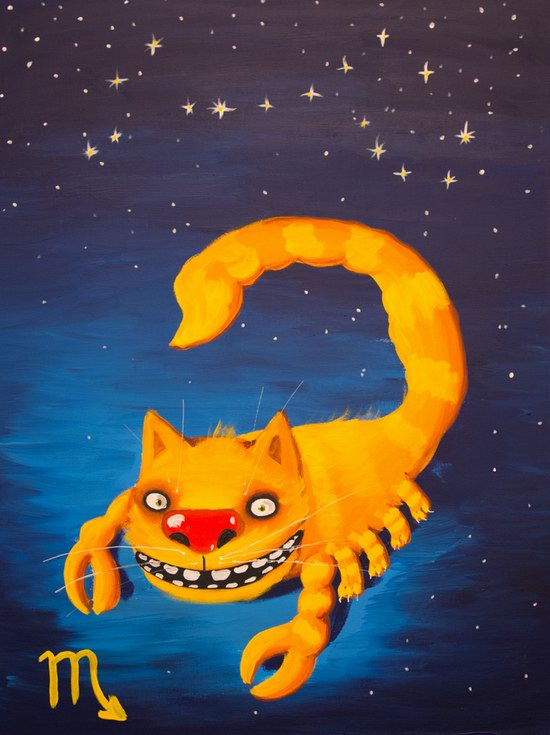 The cat zodiac signs - the Scorpion
