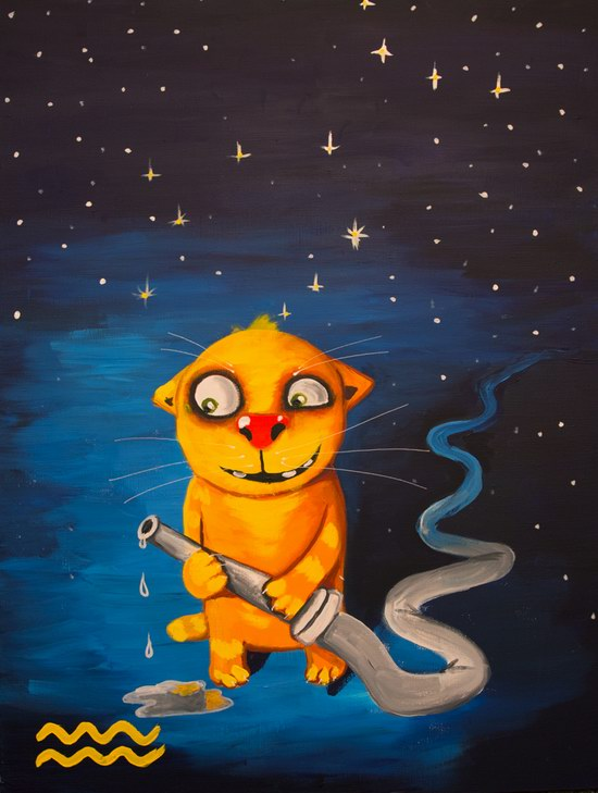 The cat zodiac signs - The Water-Bearer