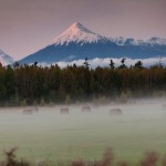 The variety of landscapes of Kamchatka