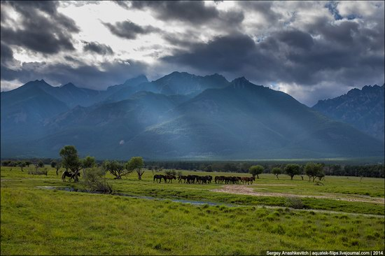 Zabaykalye prairie, Buryatia Republic, Russia, photo 1