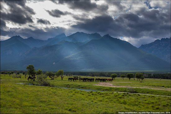 Zabaykalye prairie, Buryatia Republic, Russia, photo 1