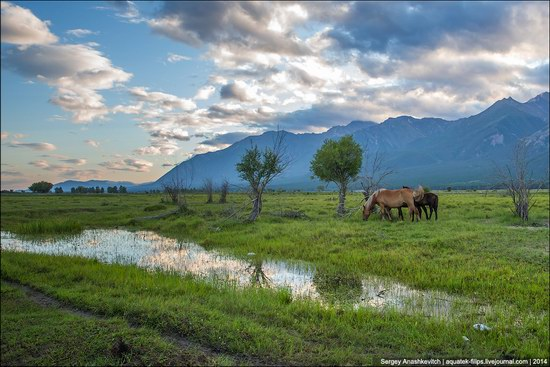 Zabaykalye prairie, Buryatia Republic, Russia, photo 2