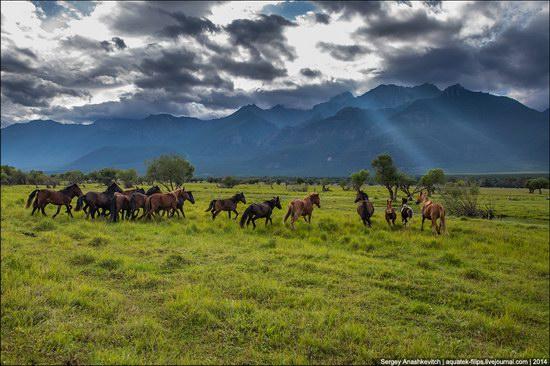 Zabaykalye prairie, Buryatia Republic, Russia, photo 4
