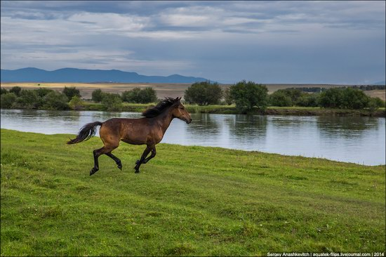 Zabaykalye prairie, Buryatia Republic, Russia, photo 6