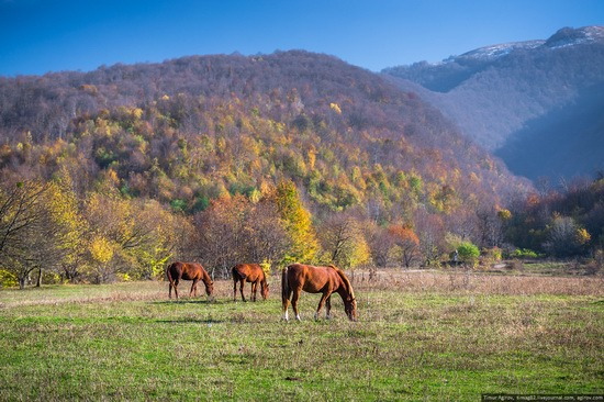 Mountainous Chechnya in late autumn, Russia, photo 12