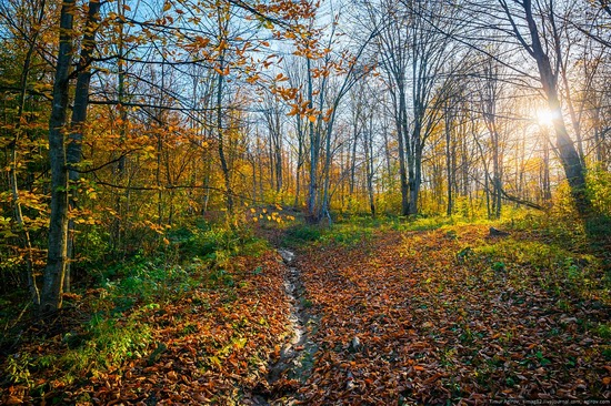 Mountainous Chechnya in late autumn, Russia, photo 13