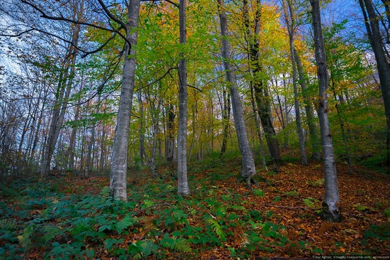 Mountainous Chechnya in late autumn, Russia, photo 14