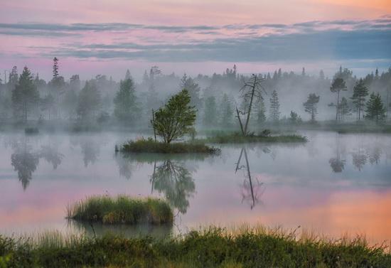 Karelia and the Kola Peninsula nature, Russia, photo 19