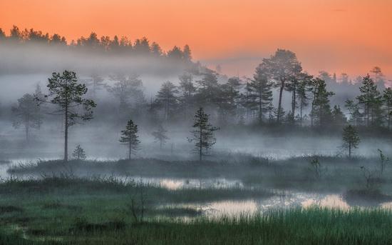 Karelia and the Kola Peninsula nature, Russia, photo 20