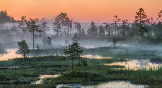 Karelia and the Kola Peninsula nature, Russia, photo 21