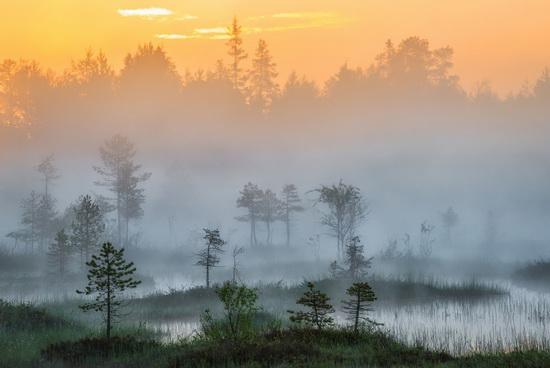 Karelia and the Kola Peninsula nature, Russia, photo 22