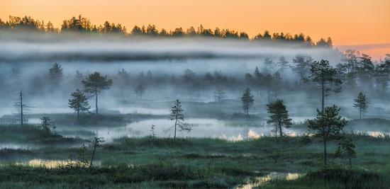 Karelia and the Kola Peninsula nature, Russia, photo 23