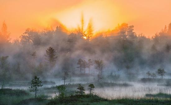 Karelia and the Kola Peninsula nature, Russia, photo 24