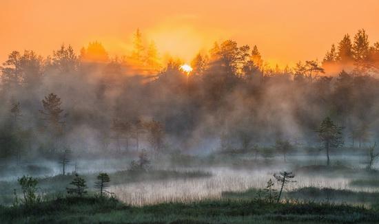 Karelia and the Kola Peninsula nature, Russia, photo 25