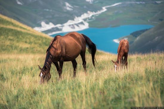 Lake Kezenoyam, North Caucasus, Russia, photo 13